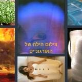 אורגונייט תכשיטי הגנה וריפוי B – Orgon