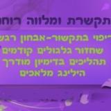 מיטל כהן