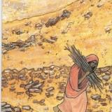 מטפלת בקלפים טיפוליים בעמק יזרעאל. אילנה אהרמן