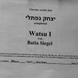 טיפולי וואטסו וריברסינג בירושלים - איציק נפתלי