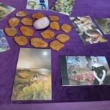 אורית ענבר - טיפול ב-LAT וטיפול רגשי בגן יבנה